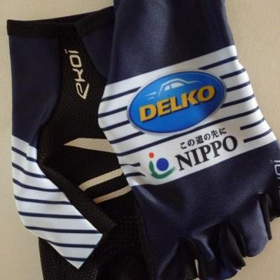 Gants aéros NIPPO-DELKO 2020 (taille M)