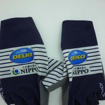 Gants NIPPO-DELKO 2020 (taille M, mod.2)